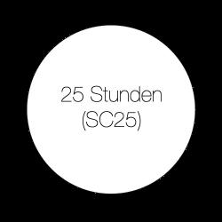 25 Stunden Beratung - SC25
