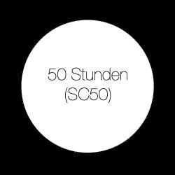 50 Stunde Beratung - SC50